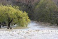 Bize- river in flood2