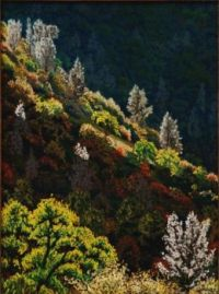 Ghosts Above the Yuba 2010 wak