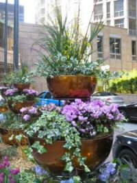 Three- tier Garden Containers in Chicago.
