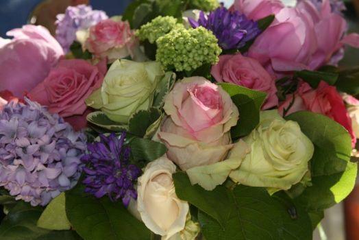 Jeanette's Flowers