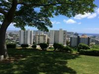 Honolulu from Punchbowl