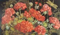 Assortment of a beautiful floral arrangement inspired by the poet Jean de  La Fontaine