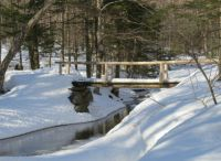 Winter Trail in Franconia Notch State Park