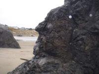 Face in the boulder, Bandon, Oregon coast