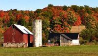 Farm near LaFayette NY