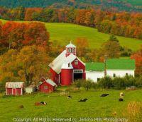 Autumn at Bogie Mountain Farm