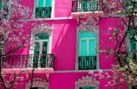 House In The Pink