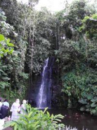 Pacific Island Waterfall