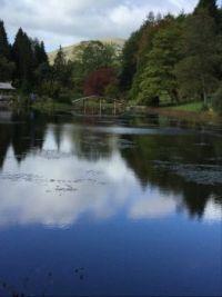 Japanese Garden Near Dollar Scotland
