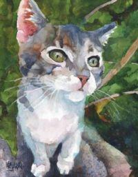 Gray and White Tabby Cat by Ron Krajewski