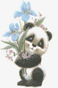 Panda Hug 9/01