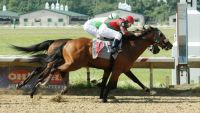 Forewarned prevails in $75,000 Stearns Cleveland Gold Cup