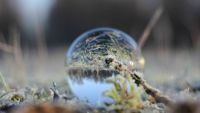 winter in a ball of glass