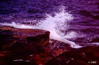 Theme - Summer Bliss - Wave Watching - Schoodic Point, Maine