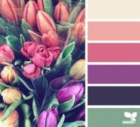 ColorSpring_150
