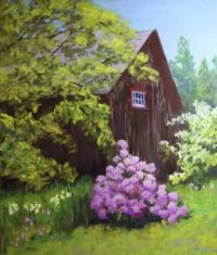 Barn and Rhododendron, Ashby, MA