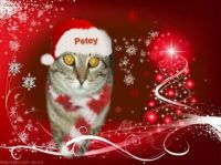 Petey wishes you a Merry Christmas