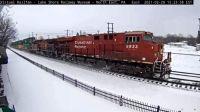 NePa CP-8933 45-pc snow