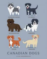 Do you know where your dog is from?? (3)