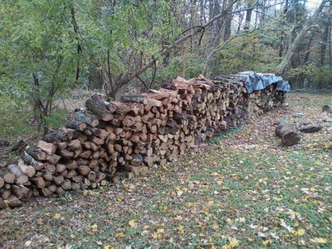 Forty Feet of Firewood
