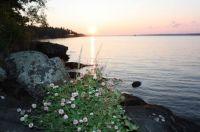 Falcon Lake sunset