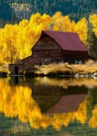 Lake Cabin in Autumn