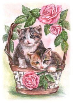 Kočičky v koši