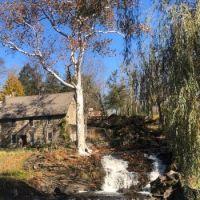 Mid-fall in Hudson Valley NY