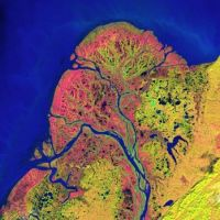 Yukon Delta taken from satellite