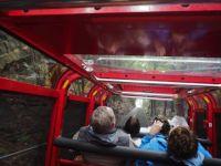 Scenic Railway - ascent