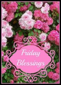 Good Morning - Friday Blessings
