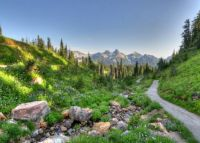 Mt Ranier area