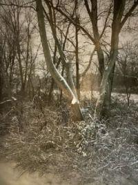 Winter in Ewing, NJ