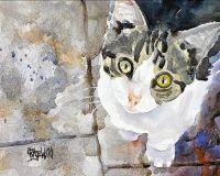 Tabby Cat by Ron Krajewski