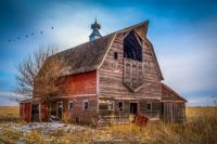 "THEME: ""Barns"" - Medium"