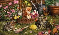 Curious Cats At Work