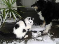 KC & Mr. Bear in snow