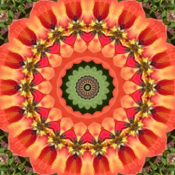 kaleidoscope 322 orange and green small