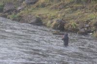 Fly fishing in Iceland  Sep 2019
