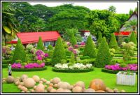 Amazing gardens (13)
