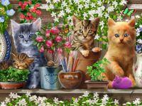 Garden Cats #1