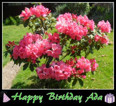 Happy Birthday Ada