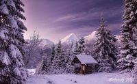 Zima pod Tatrami, Slovakia
