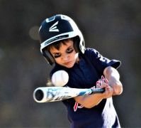 THEME::  Sports . . . Baseball