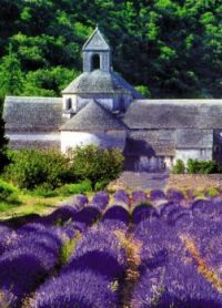 Provence, France ................