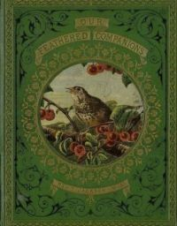 """Vintage Book Titled, """"Our Feathered Companions"""" By Rev, T. Jackson"""