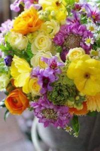 b květiny