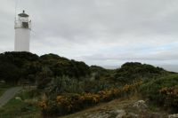 Lighthouse at Cape Foul Wind, New Zealand