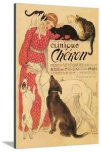 Clinique Cheron Poster
