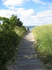 Cape Cod Beach Walk